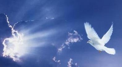 Memorial Dove